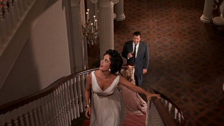 a cat on the hot tin roof essay